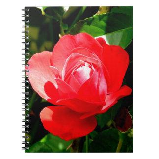 Corazón abierto del rosa rojo para el amor cuaderno