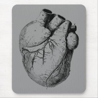 Corazón anatómico correcto mouse pads