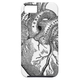 Corazón anatómico del vintage iPhone 5 Case-Mate carcasas