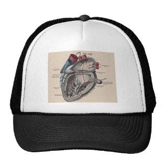 Corazón anatómico del vintage gorros