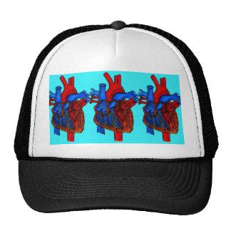 Corazón anatómico dibujado mano de la aguamarina gorros bordados