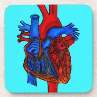 Corazón anatómico dibujado mano de la aguamarina posavaso