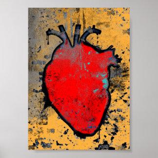 corazón anatómico póster