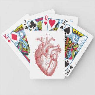 Corazón anatómico rojo barajas