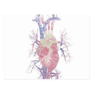 Corazón (Biro) Tarjetas Postales