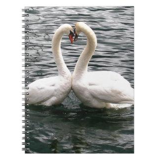 Corazón blanco del cisne que se besa