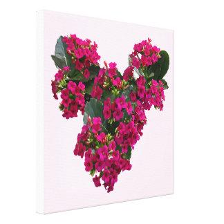 Corazón de Kalanchoe Lienzo Envuelto Para Galerias