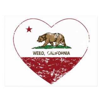 corazón de la mala hierba de la bandera de Califor Tarjeta Postal