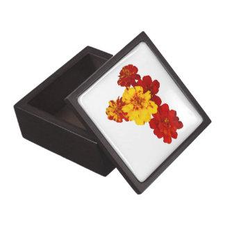Corazón de la maravilla cajas de joyas de calidad