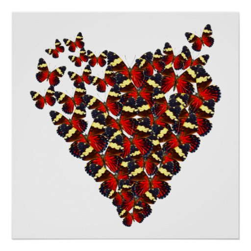 Corazón de la mariposa posters