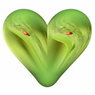 corazón de la mariquita adorno fotoescultura