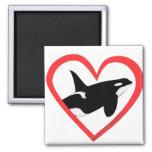 Corazón de la orca imanes