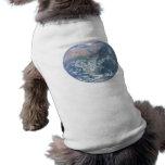 Corazón de la tierra camisetas de mascota