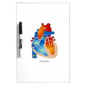 Corazón de oro (AU del símbolo químico) Tableros Blancos