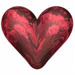 corazón de rosas esculturas fotograficas