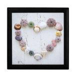 Corazón de seashells y de rocas caja de recuerdo