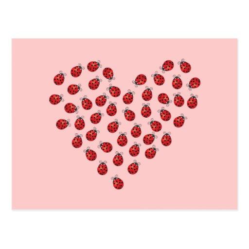 Corazón del amor de la mariquita postal