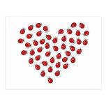 Corazón del amor de la mariquita tarjeta postal