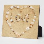 Corazón del amor del Seashell Placas Con Fotos