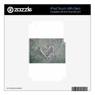 Corazón del flor del ciruelo iPod touch 4G calcomanía