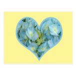 Corazón del Hydrangea Tarjetas Postales