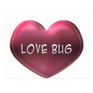 corazón del insecto del amor tarjetas postales