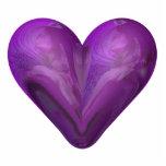 corazón del iris esculturas fotograficas