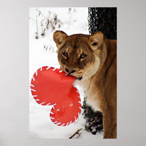 Corazón del león impresiones
