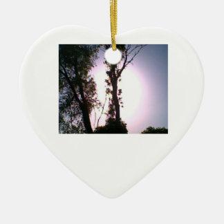 corazón del ornamento de DNatureofDTrain del árbol Ornatos