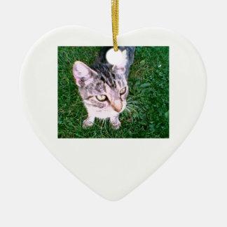 Corazón del ornamento del Uma de DNatureofDTrain Ornamento De Navidad