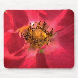 Corazón del rosa alfombrilla de ratones