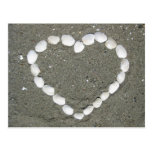 Corazón del Seashell Postal