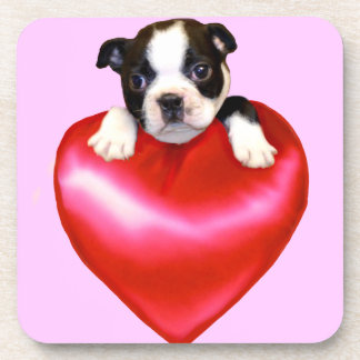 Corazón del terrier de Boston Posavasos