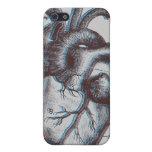 Corazón del vintage - anatomía iPhone 5 cárcasas