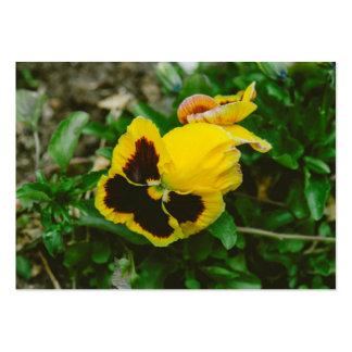 Corazón-facilidad del marrón amarillo tarjetas de visita