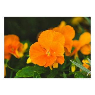 Corazón-facilidad marrón anaranjada plantillas de tarjetas personales
