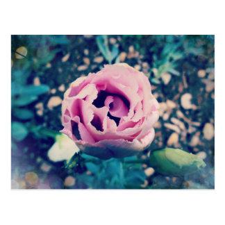 Corazón floreciente tarjeta postal