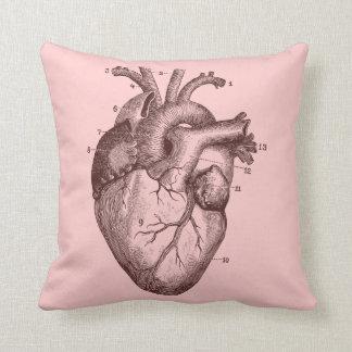 Corazón humano - anatomía almohadas