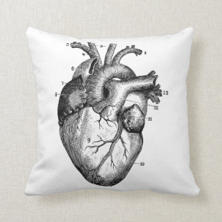 Corazón humano - anatomía almohada