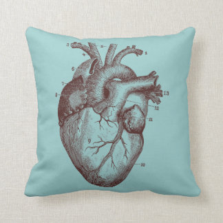 Corazón humano - anatomía cojín