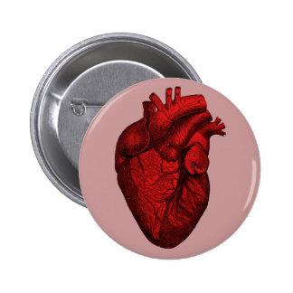 Corazón humano anatómico pin redondo de 2 pulgadas