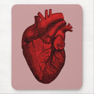 Corazón humano anatómico alfombrillas de ratones