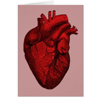 Corazón humano anatómico felicitaciones
