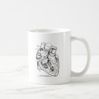 Corazón humano de la anatomía del vintage blanco y taza de café