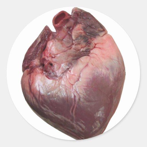 Corazón humano etiquetas redondas