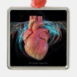 Corazón humano, ilustraciones del ordenador ornamentos de reyes