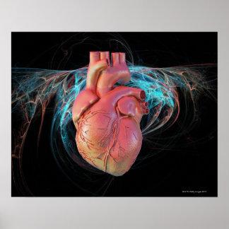 Corazón humano, ilustraciones del ordenador poster