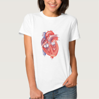 Corazón humano playeras