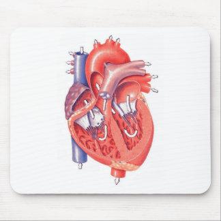 Corazón humano tapetes de ratones