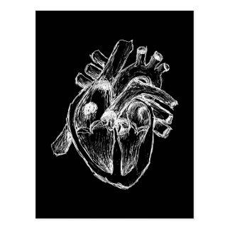 Corazón humano tarjeta postal